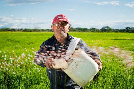 COADIUVANTI AGRICOLI: STESSE AGEVOLAZIONI FISCALI DEL CAPO AZIENDA COLTIVATORE DIRETTO.
