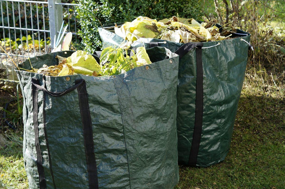 I rifiuti da potatura non rappresentano un reato se riutilizzati in agricoltura