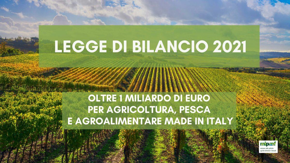 LEGGE DI BILANCIO 2021 : MISURE SETTORE AGRICOLO