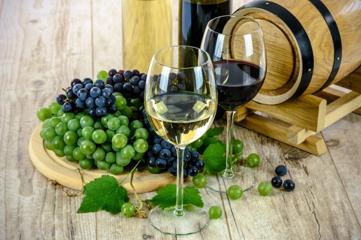 VITICOLTURA: Campagna viticola 2020-2021